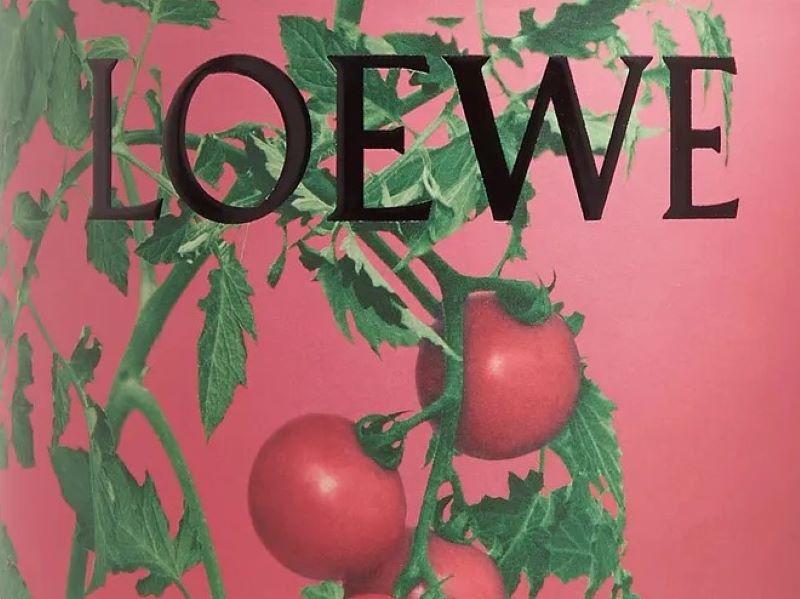 La nouvelle collection Loewe Home Scents disponible chez Mr Porter